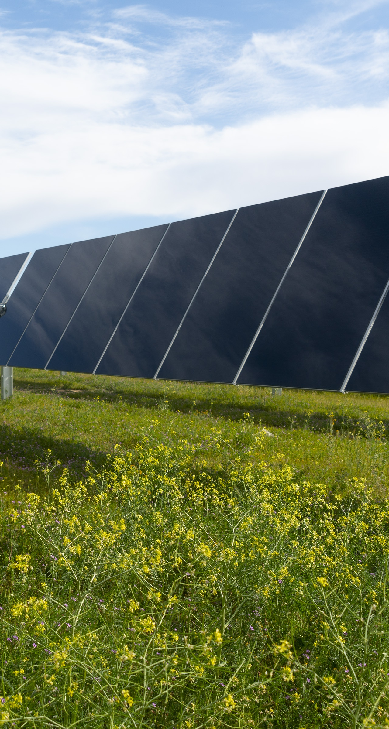 First Solar's Series 6 modules deployed in a project in Kern County, California