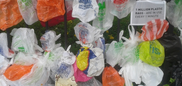 Cleaning up consumer behavior with plastic bag fees